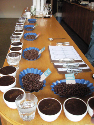 Cupping at Stumptown